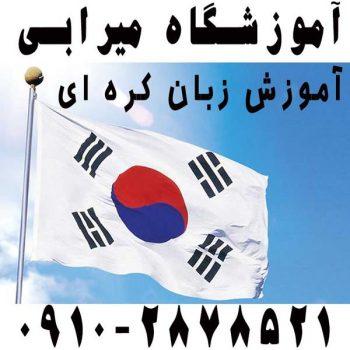 معلم خصوصی زبان کره ای