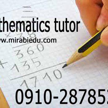 Math Physics Teacher in Tehran