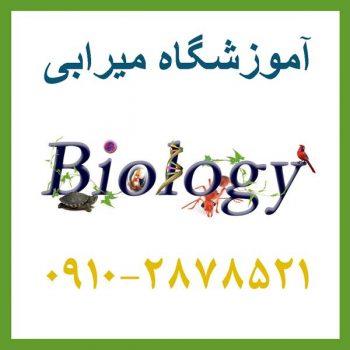 دبیر آنلاین زیست شناسی